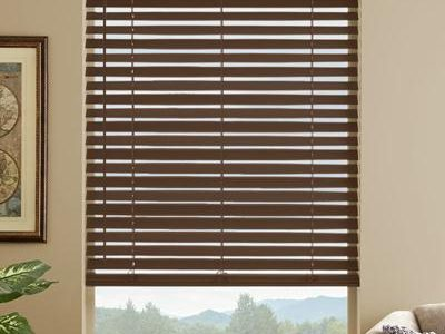 Blinds and Curtains (5)